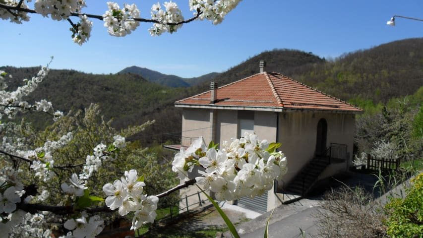 Casa di Giulio - Relax in the green - Erli - Appartement
