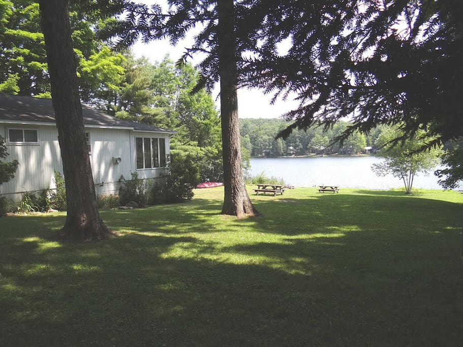 View from the side yard.  Large, private double lot.