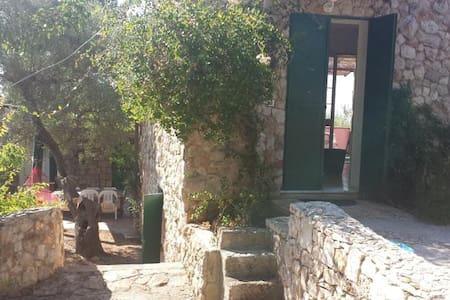 Villa Minteco superior - marina san gregorio, patù - House - 1