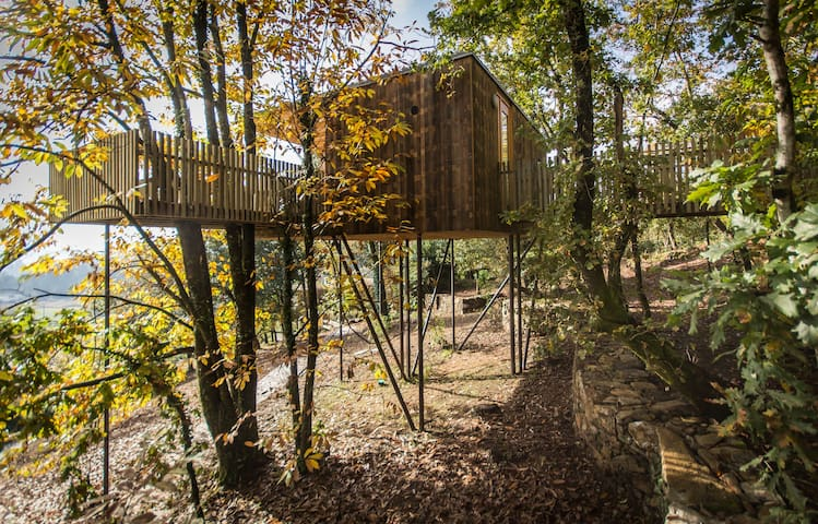 Tree house (Furnas Cabin) - Outes - 樹屋