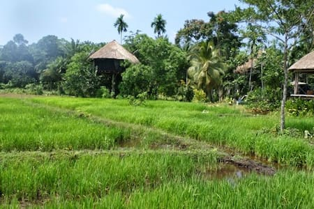 Welcome to Huma Terra Green Lodge - DISTRICT OF GALLE
