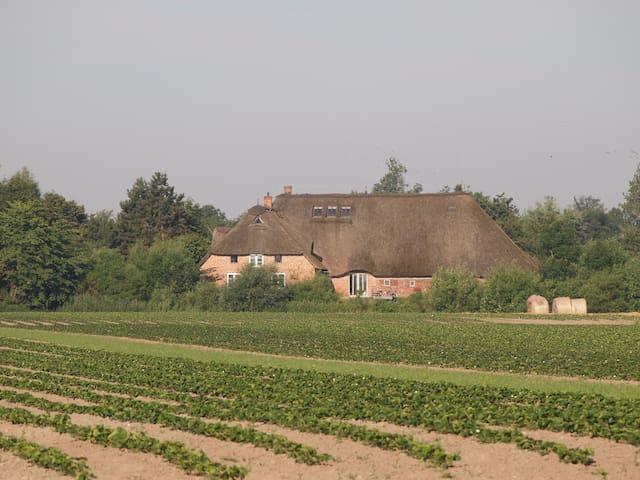 Sibyllenhof bei St. Peter-Ording - Garding