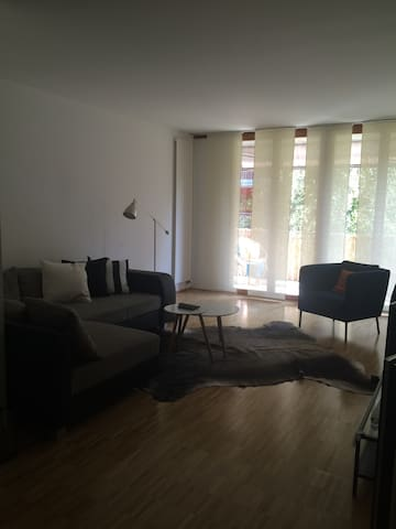 Nice equipped apartment in Riehen - Riehen - Appartement