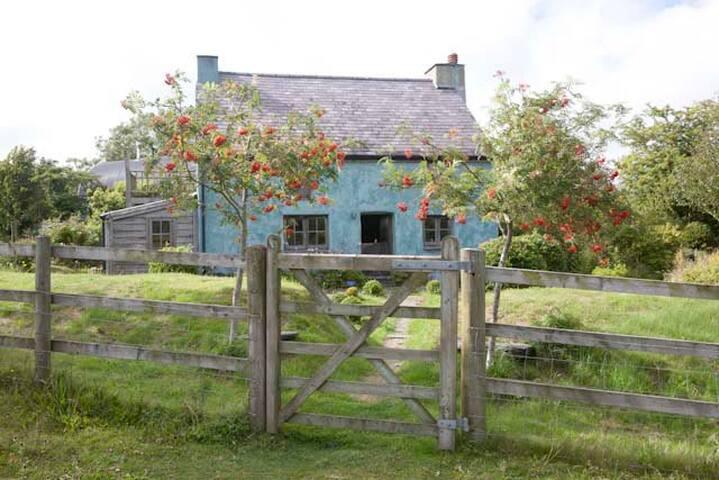 A welsh cottage - Pembrokeshire - Dom