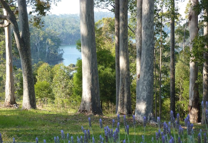 pub hill farm bed and breakfast - Narooma - Bed & Breakfast