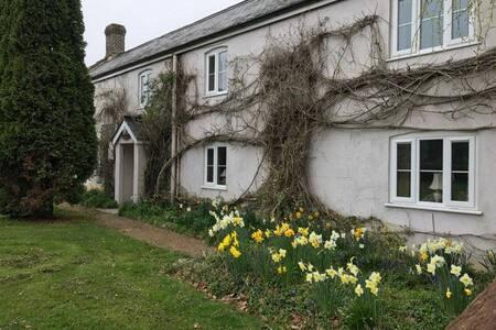 Homely cottage near Lyme regis - Dalwood - Huis