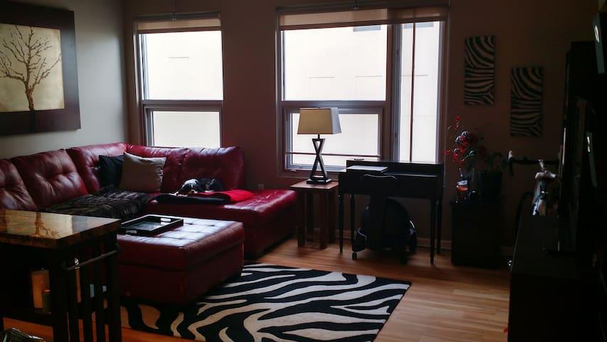 Clean Apartment in Downtown Omaha! - Omaha - Apartamento