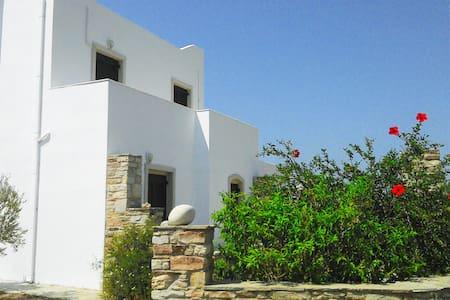nice maisonette in agios prokopios - Agios Prokopios - Villa