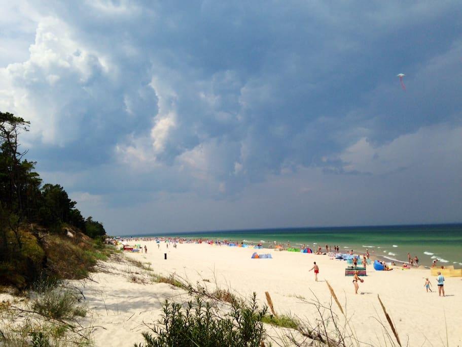 beach (July - August)