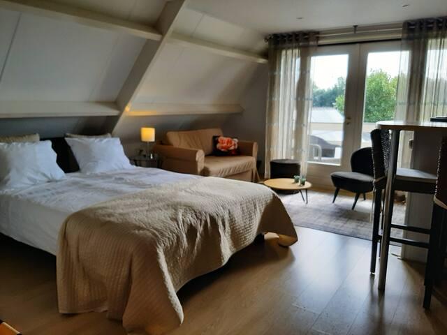 Ruime kamer met badkamer en balkon.