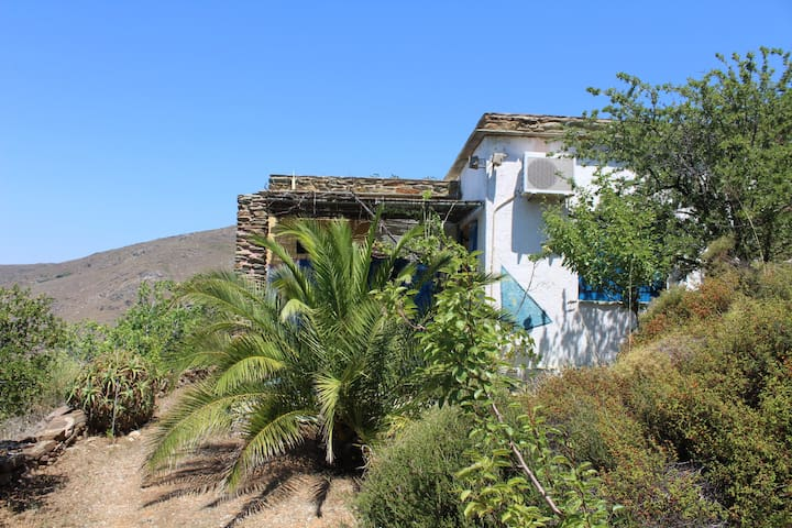 Andros - family-friendly house