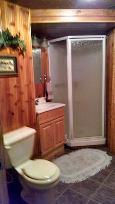 Lower level. Bathroom