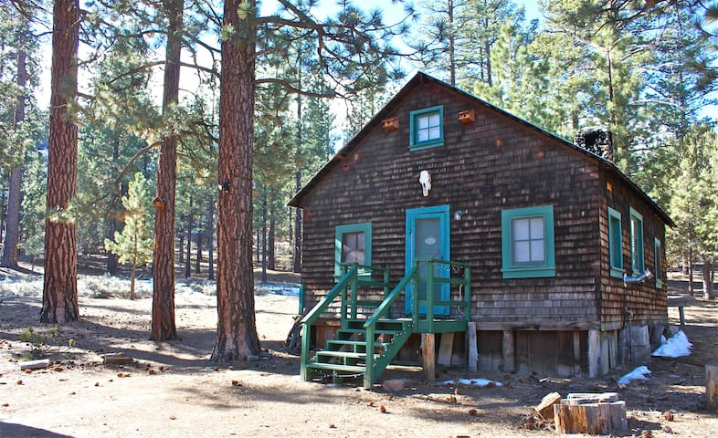 Spirit of 1870s in gold rush cabin houten huisje te huur for Usmc big bear cabins
