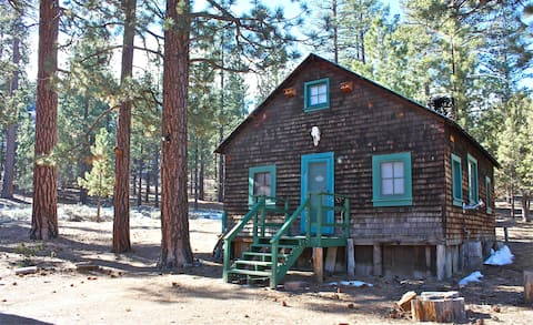 SPIRIT OF 1870s IN GOLD RUSH CABIN