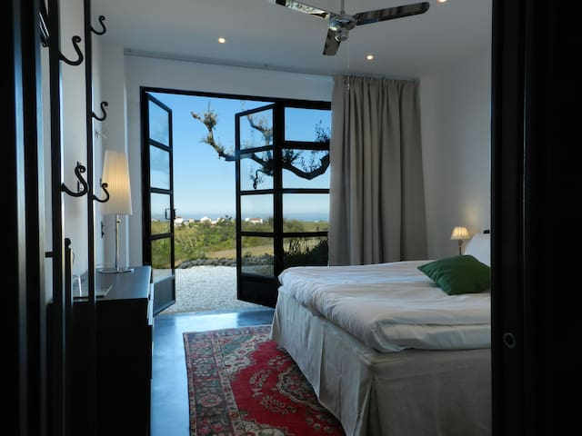 Designed boutique hotel with pool. 8 rooms ensuite - Villalfonsina