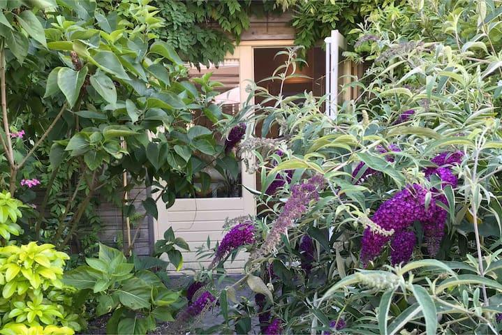 Private Garden House in Haarlem center