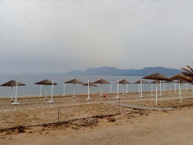 Μονοκατοικία στη Δροσιά Χαλκιδας-Παραλία Αλυκές - Drosia - House