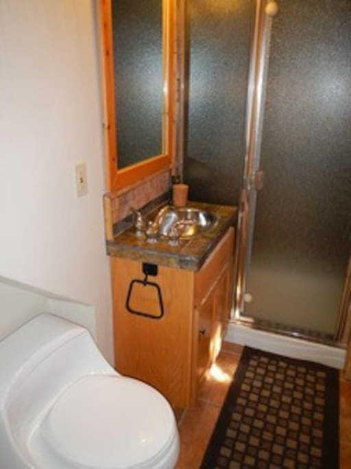 Full bath w/stand up shower-downstairs