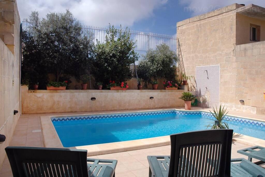 Pool has shared sun loungers
