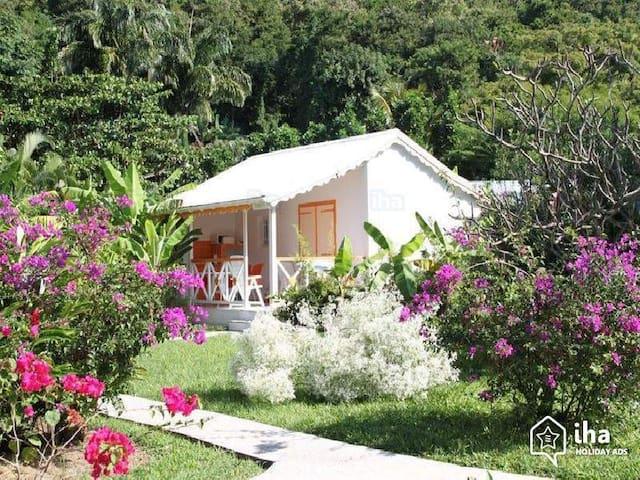 Bungalow accès direct plage de Grand Anse Deshaies