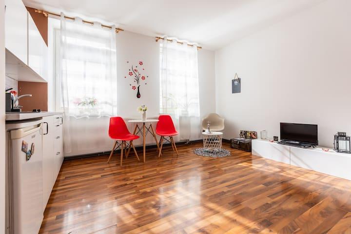 Apartmán Křenka Brno-střed