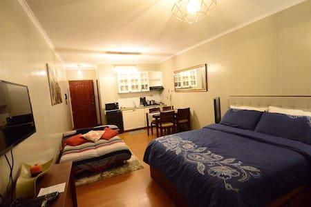 Elegant studio-type apartment