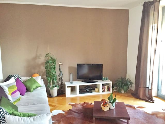Spacious Glion apartment - Glion - Appartement