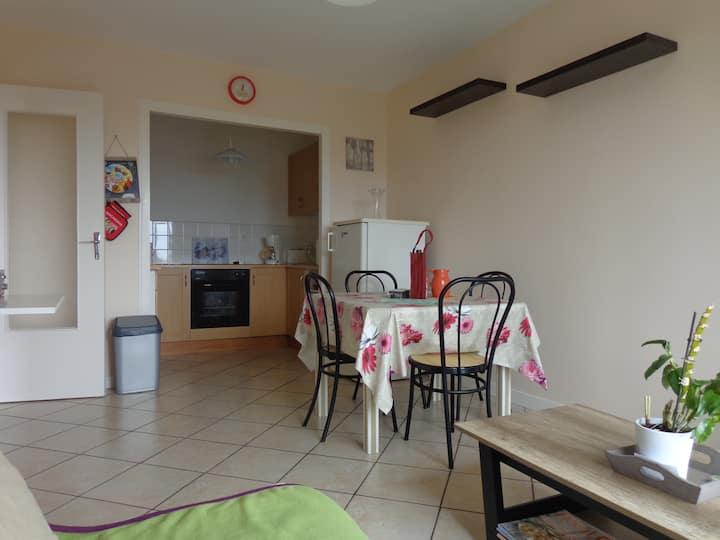 Appart 35 m2 avec balcon exposition plein sud