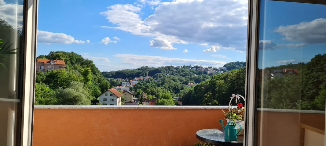 Forest views, nature, new apartment, free parking