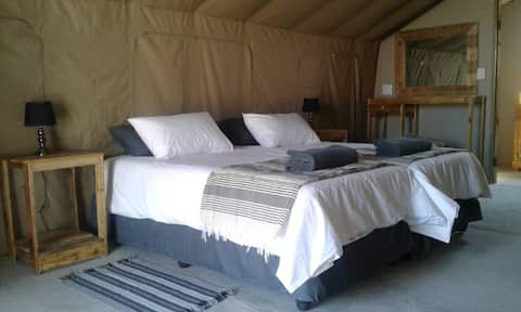 Blue Bushman Tented Lodge with a beautiful view