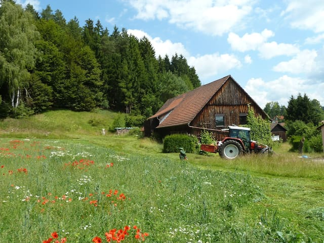 Holidays in the Franconian Switzerland (Bavaria) - Obertrubach - Apartment