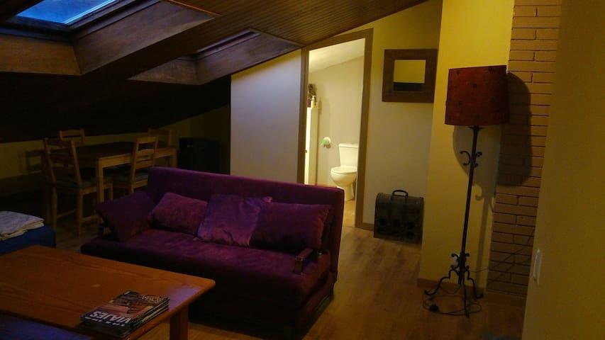 Atico Encantador Abuhardillado - Camprodon   - Apartment