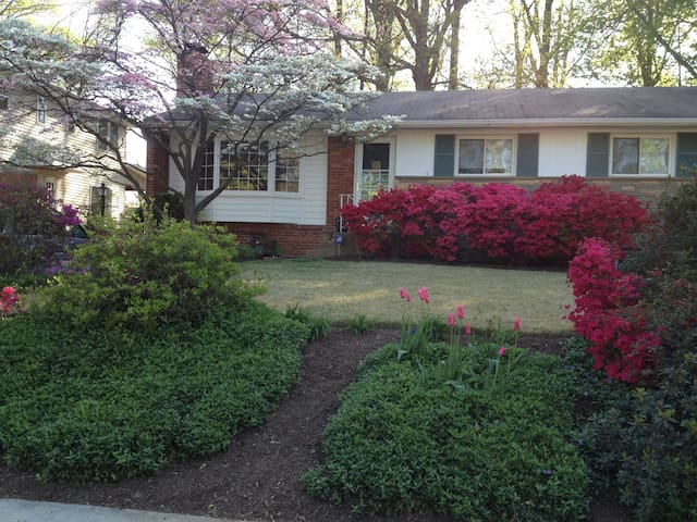 Large Private Space near NIH & Navy Med - Bethesda - Casa