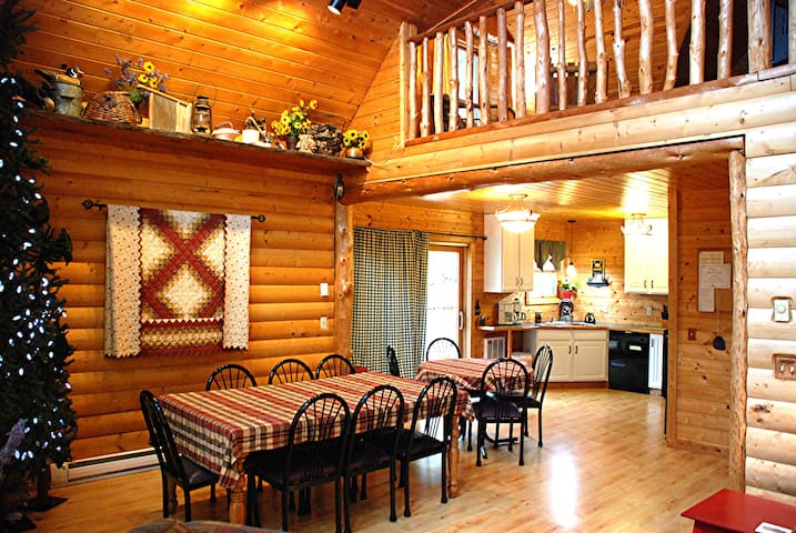 Lakeview Luxury Cabin near Itasca State Park
