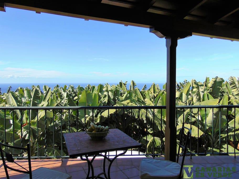 Terraza 2 orientada al oeste, vistas plataneras, mar y atardecer.