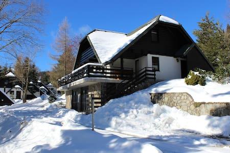 ROGLA - Peaceful mountain chalet - Resnik, Zreče - Apartment