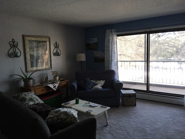 1 Bedroom Condo in Hopkins Close to Downtown