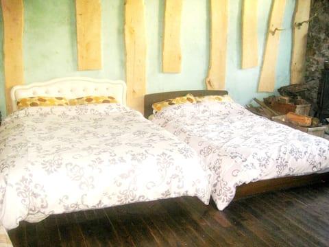 RF Forest: Unique Renovated Homestay near Rusutsu