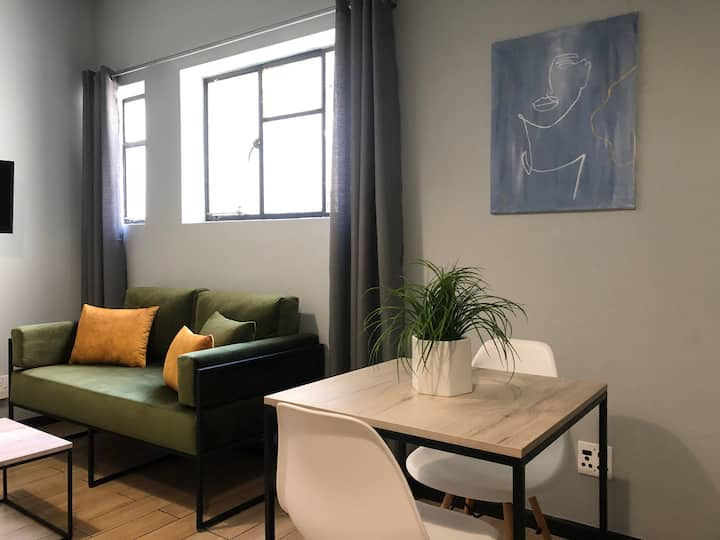Modern and Stylish City Apartment