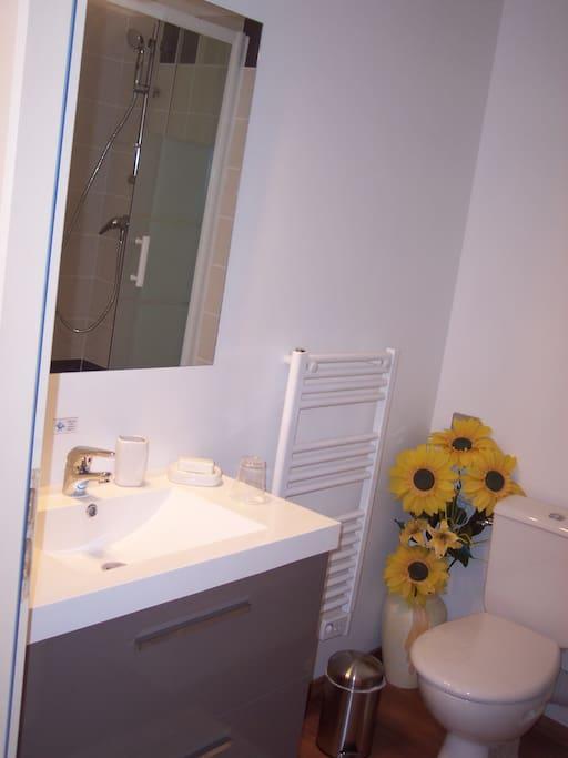 Salle de bain équipé d'un sèche-cheveux et d'une machine à laver le linge