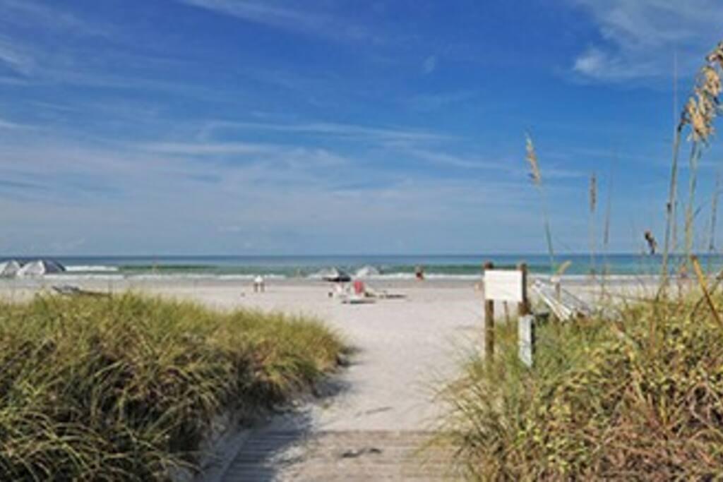 Siesta Key Beach Hotels And Condos