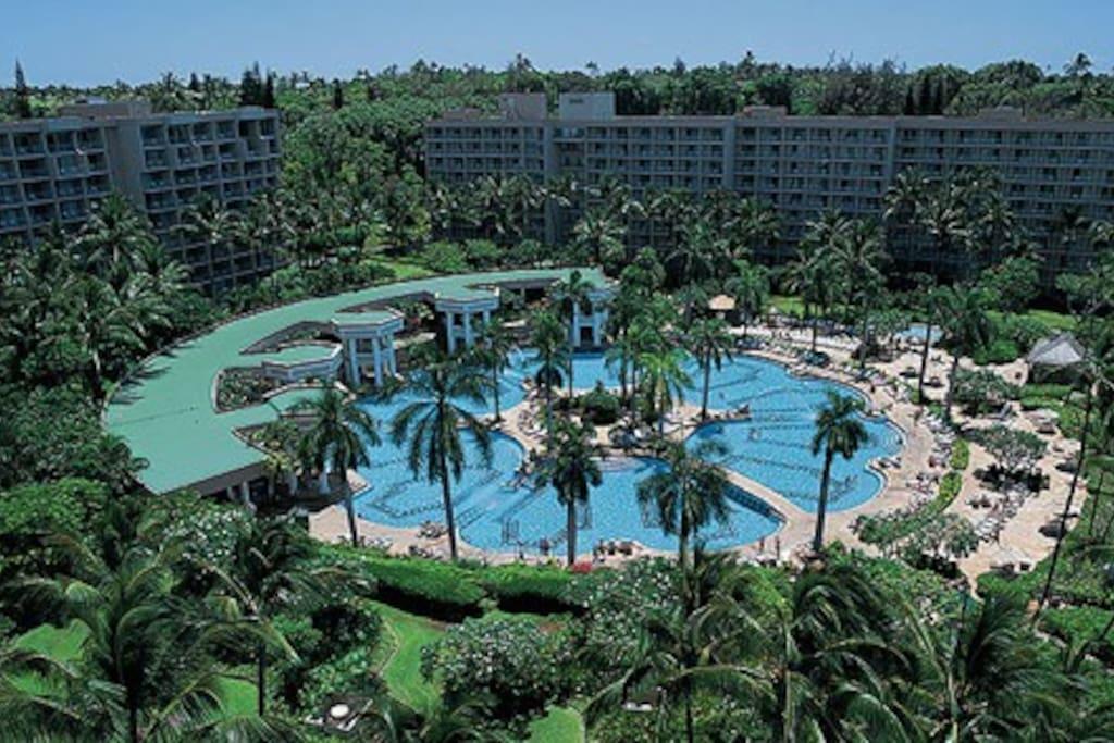 Largest pool on the Hawaiian Islands.