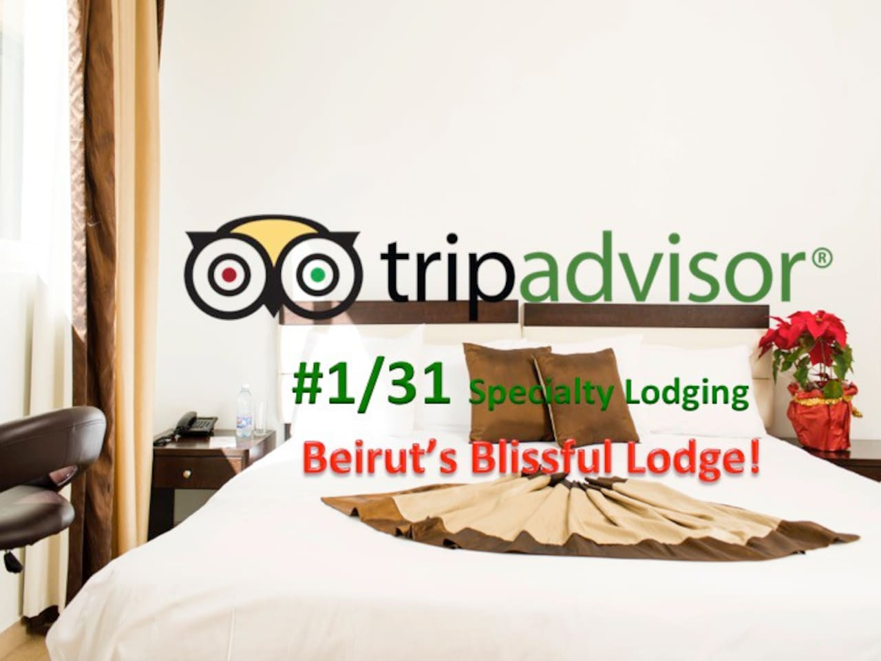 Bliss 3000 rated #1/31 Specialty Lodging in Beirut.