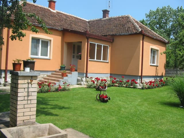 Vacation in Valjevo - Valjevo - House