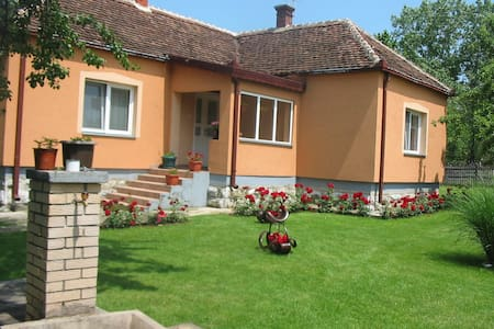 Vacation in Valjevo - Valjevo - Hus