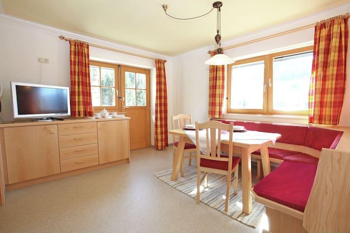Maison vacances moderne à Maria Alm près du domaine skiable