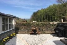 Courtyard garden. With gas bbq.