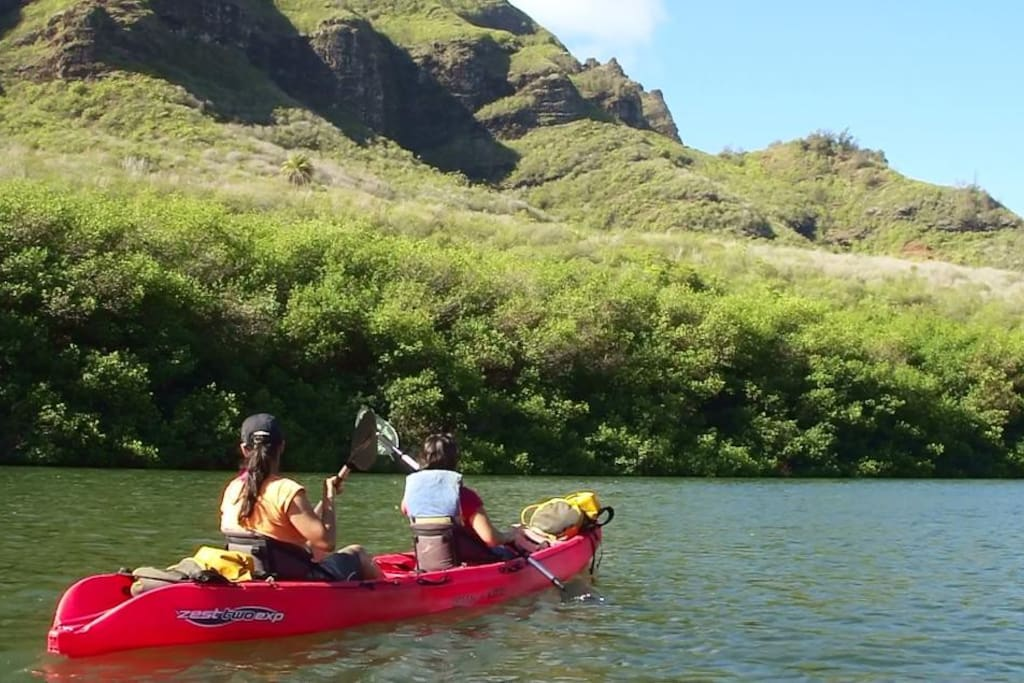 Kayaking as a group is a wonderful way to explore the island.