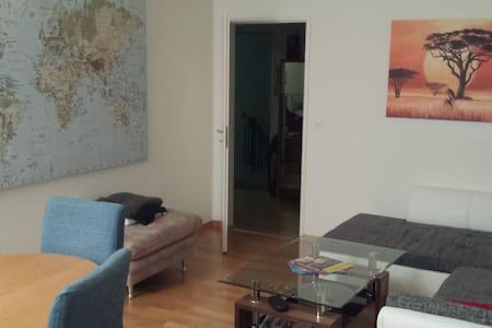 Gemütliches Zimmer 30min von Zürich - Zufikon - Leilighet