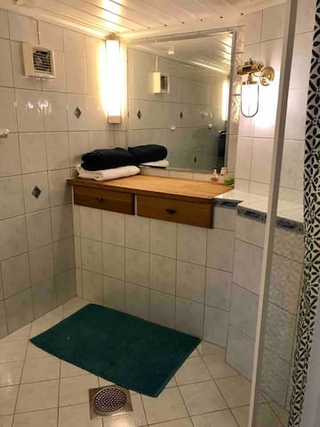 Bathroom with good light and big mirror. Hairdryer is available.